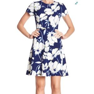 Eliza J White and Blue Floral Dress